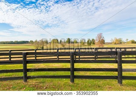 Beautiful Country Landscape With Black Wooden Fence And Pastures Of Horse Farms.