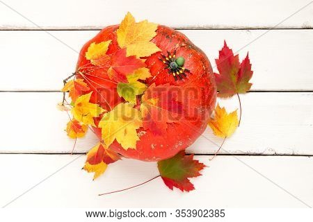 Decorative Pumpkin With Maple Leaves And Spider, Autumn Season Background.
