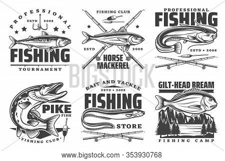 Fishing Icons And Fisherman Club Signs, Sport Tournament And Fish Catch Lures, Baits And Tackles Sho