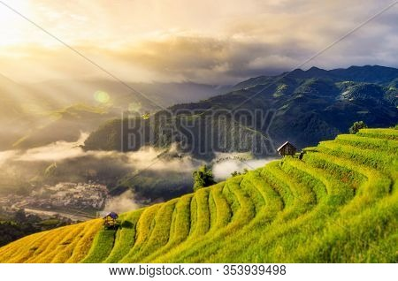 Rice Fields On Terraced Of Mu Cang Chai, Yenbai, Vietnam. Rice Fields Prepare The Harvest At Northwe