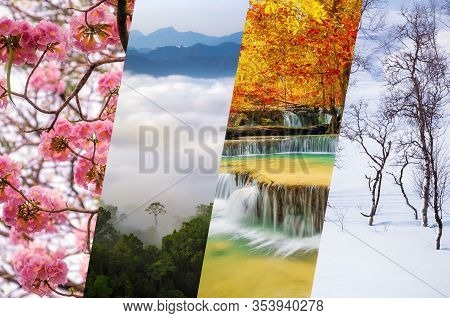 Beautiful Nature Collage - Four Seasons Of Year Collage, Different Time Of Year - Winter, Spring, Su