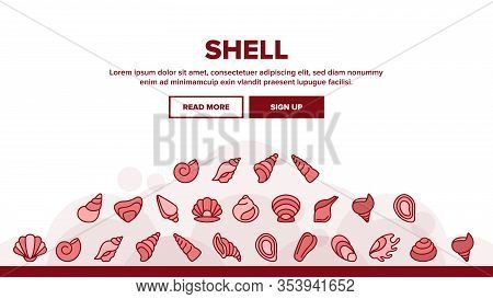 Shell And Marine Conch Landing Web Page Header Banner Template Vector. Nature Ocean Shell For Shellf