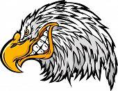Eagle Head Vector Graphic Mascot Cartoon Image poster