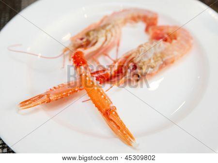 Scampi cut in halves on porcelain plate