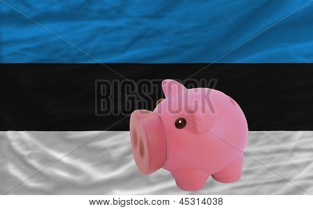 Piggy Rich Bank And  National Flag Of Estonia