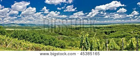 Green landscape panorama under blue sky