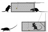 Editable vector illustration of a rat getting caught in a humane trap poster