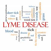 Lyme Disease Word Cloud Concept with great terms such as deer tick blood bullseye bite and more. poster