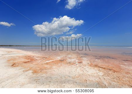 summer scene on salt sea poster