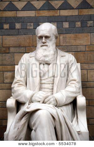 Charles Darwin Statue