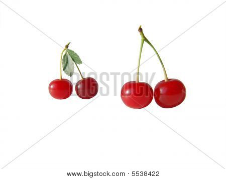 Two Couples Of Red Cherry