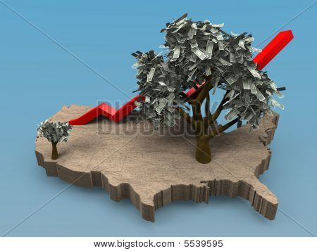 Growing Money Tree In The Usa