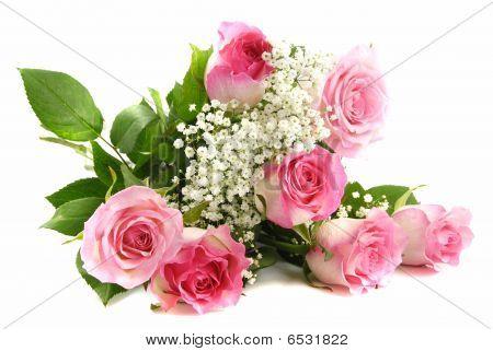 Rosas cor de rosa