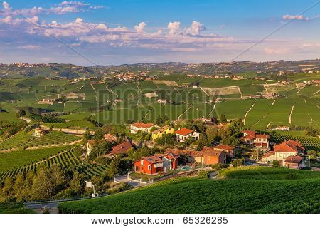Small village surrounded by green vineyards at sunset in Piedmont, Northern Italy.