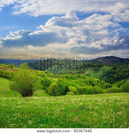 Village On Hillside Meadow In Mountain