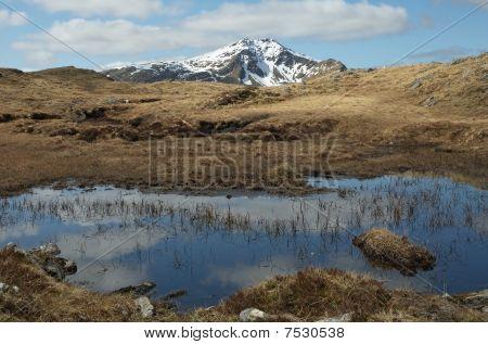 Spring in the hills of Scotland. Ben Lui near Crianlarich. poster