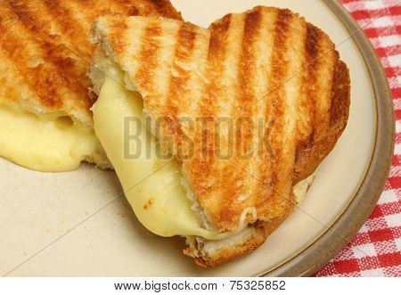 Toasted cheese sandwich on beige plate