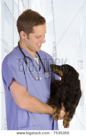 poster of Veterinarian on white holding a black dog.