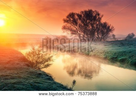 Majestic foggy river with fresh green grass in the sunlight. Dramatic colorful scenery. Dnister river, Ternopil. Ukraine, Europe. Beauty world. Retro style filter. Instagram toning effect.