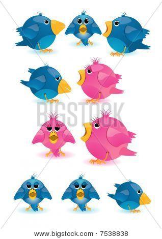 blue-colored passerine birds