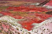 Landscape of painted desert, in Petrified forest, Ariz, western USA poster