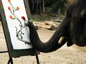 The Elephant draw the picture -talented artist poster