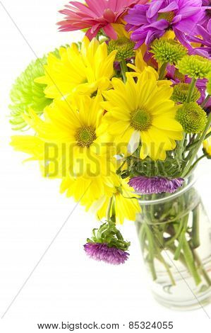 Colorful Flowers For Special Occasions