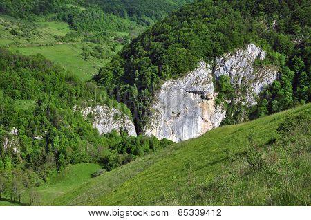Vibrant green hills, rural landscape at spring poster