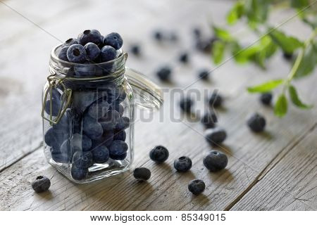Blueberry antioxidant organic superfood in a jar concept for healthy eating and nutrition