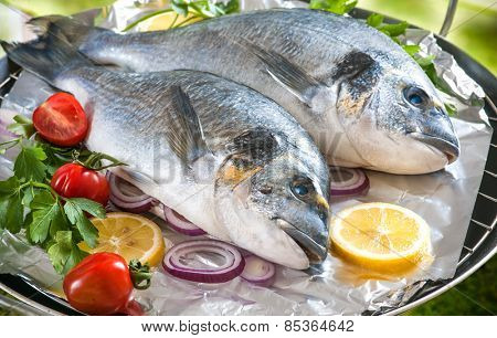 Some of Gilthead sea breams with the vegetables on a grill