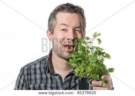 Eating Plant