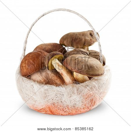 Boletus Edulis And  White Fungus In The Basket On White Background