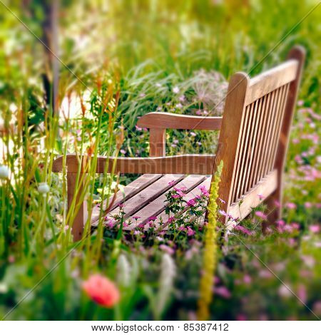 Wooden Bench in a wildflower garden. Square composition