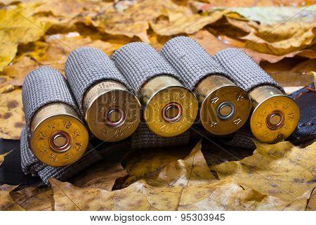 Bandoleer On The Autumn Leaves