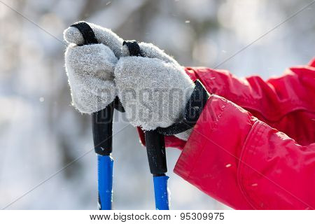 Ski Poles In Women's Hands