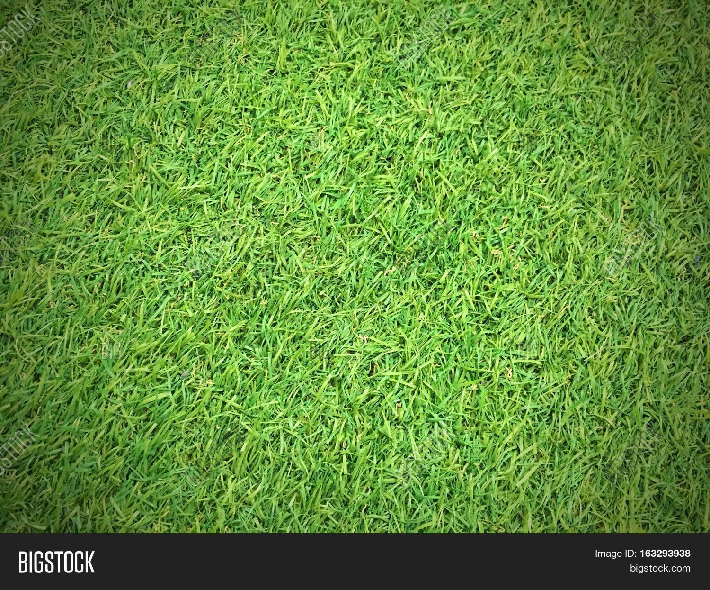 artificial grass texture. Green Grass Texture Background, Artificial
