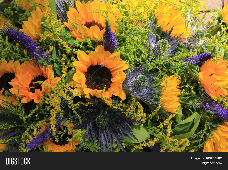 Blue yellow wedding flowers image photo bigstock blue and yellow wedding flowers sunflowers and eryngium or sea holly mightylinksfo