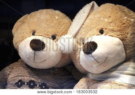 Closeup of two teddy bears on sale.
