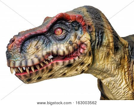 Head of a big T-Rex dinosaur on a total white background