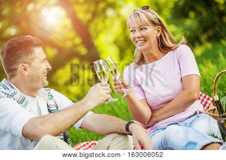 Happy mature couple having picnic in th park.Couple enjoying white wine on picnic.