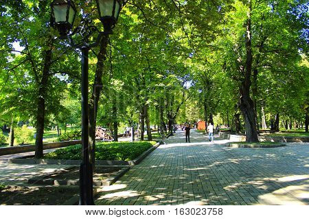 Beautiful park with nice promenade path and high green trees