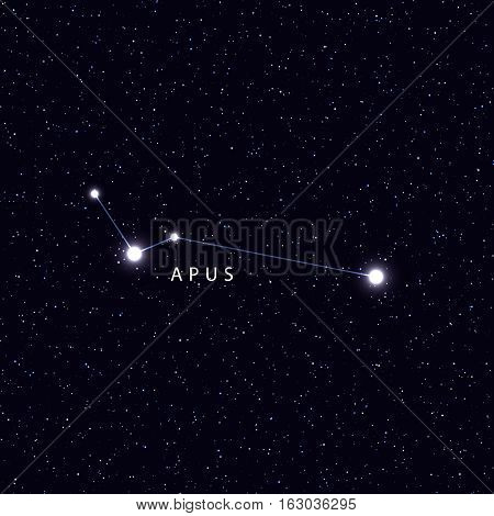 Sky Map with the name of the stars and constellations. Astronomical symbol constellation Apus