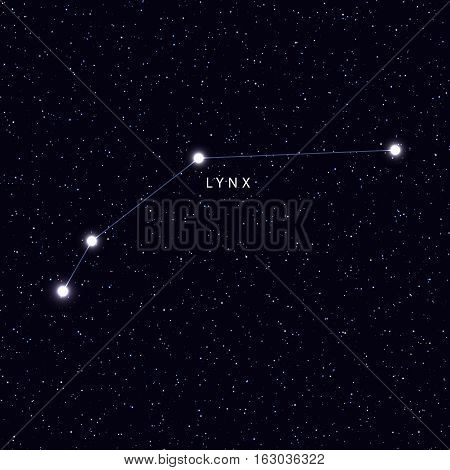 Sky Map with the name of the stars and constellations. Astronomical symbol constellation Lynx