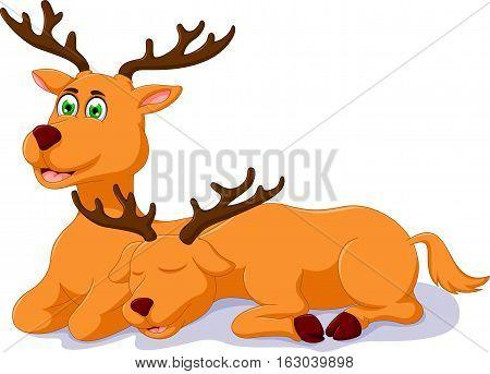 cute two deer cartoon sitting for you design