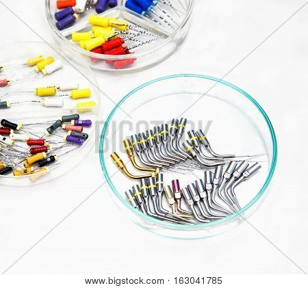 Endodontic Equipment in Petri dish glass closeup.