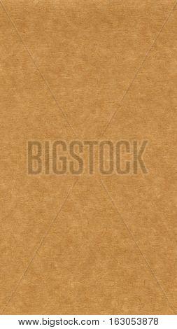 Corrugated Cardboard Seamless Background - Vertical