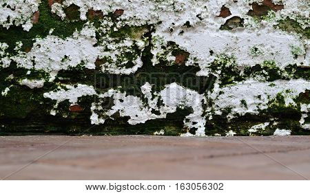Weathered white brick lichen moss wall and out of focus brown floor