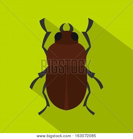 Bug icon. Flat illustration of bug vector icon for web