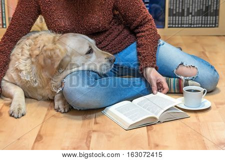 Woman is sitting down on the floor with Golden retriever dog. Open book and white cup of coffee are lying in front of them. The letters in the book are intentionally blurred.