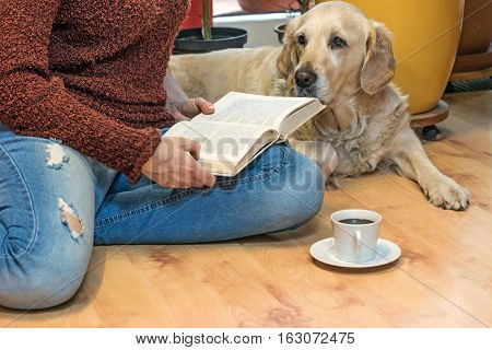 Woman is reading a book sitting down on the floor with Golden retriever dog. White cup of coffee is lying in front of her. The letters in the book are intentionally blurred.
